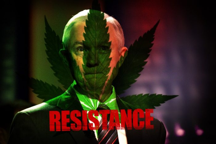 Resistance Podcast: Trump is Coming for Our Weed