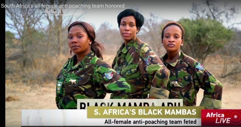 Meet the Black Mambas, an all Female Anti-Poaching Unit in South Africa