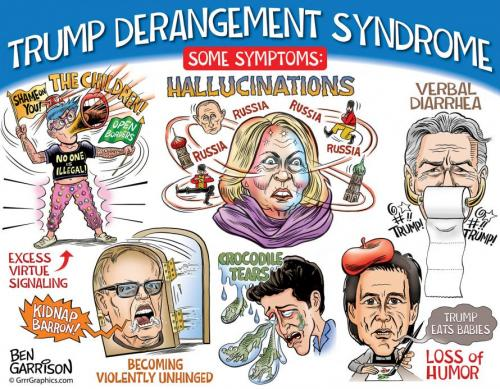 Trump Derangement Syndrome Proves Liberalism is a Mental Disorder