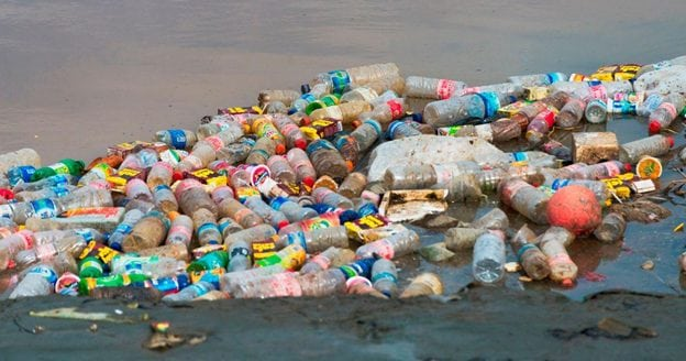 Soda Companies Plan for the end of Plastic Bottles Warns William Sipper