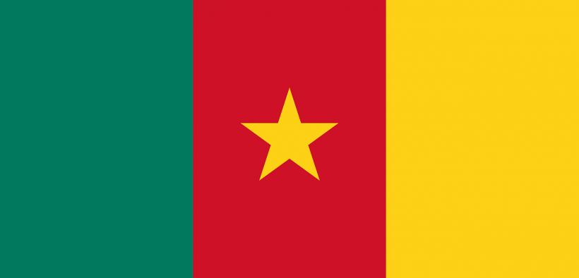 growing state violence in Cameroon, Cameroon flag
