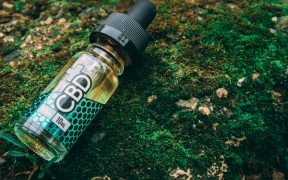 Photo of a small bottle of CBD oil on grassy rock