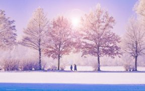 Photo nature people walking in snow