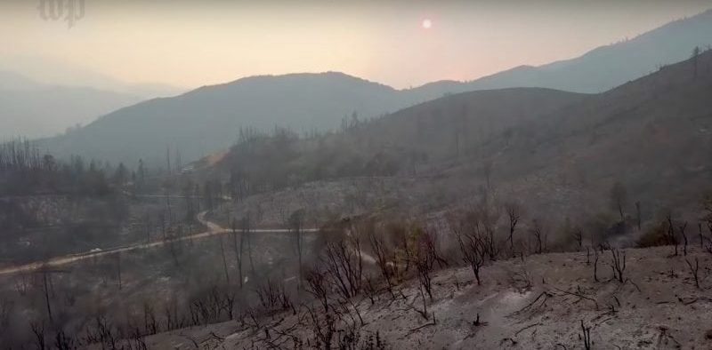 image of burned out area caused by Carr fire