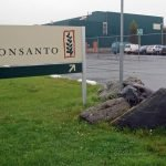 Update on First-Ever Lawsuit Targeting Monsanto and Roundup