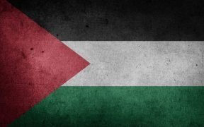 Graphic of Palestine Flag