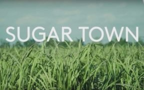 Logo for new documentary Sugar Town