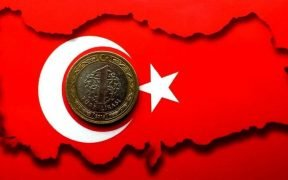 Image of the outline of Turkey's county with Turkish coin
