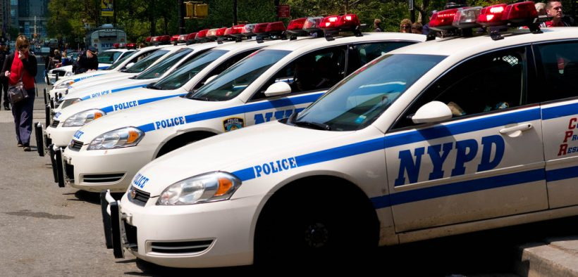 Photo of NYPD cop cars lined up in a row.