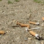 2.4 Million Cigarettes Collected in Beach Cleanup – Tops Ocean Garbage List