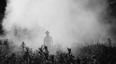 New Study Links Colon Cancer Deaths To Increased Pesticide Use In Brazil Citizen Truth