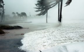 photo of beach during Hurricane Dennis which struck Florida in 2005. Is climate change causing an increase in hurricanes?