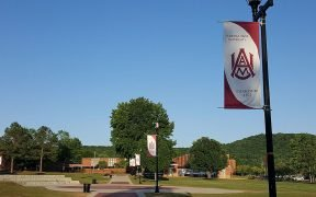 """Centralized walkway on the campus of Alabama A&M University, known as """"The Quad."""""""