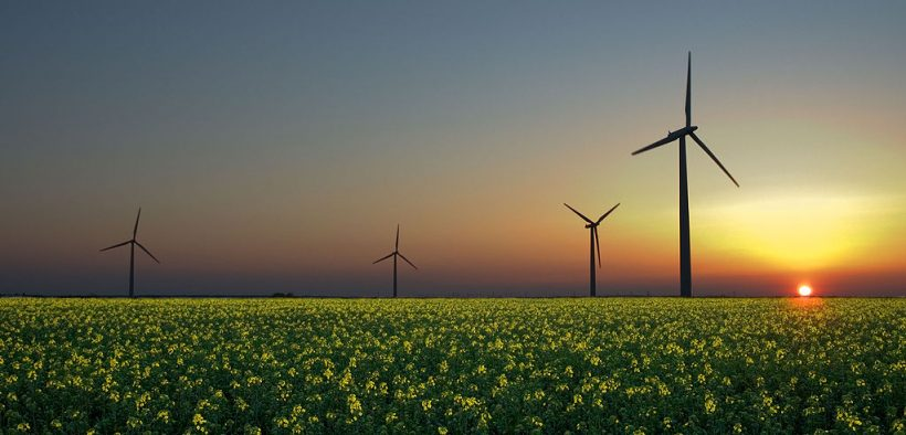 Wind turbines in a rapeseed field in Sandesneben, Germany.