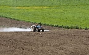 Pesticide application for chemical control of nematodes in a sunflower planted field. Karaisalı, Adana - Turkey.