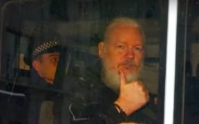 Julian Assange (screenshot di YouTube)