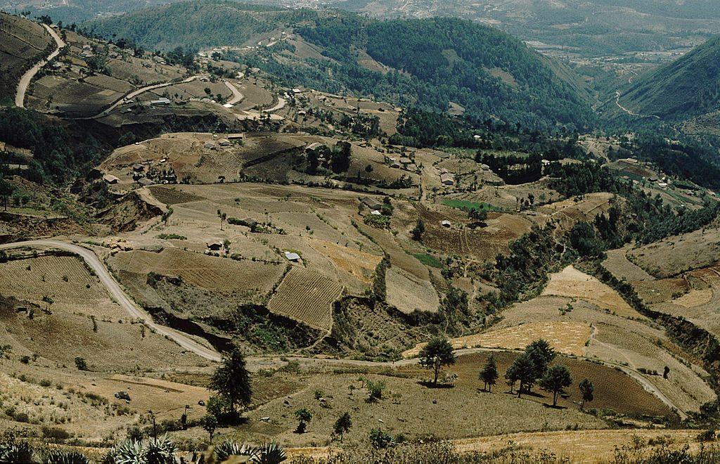 Regione contrabbando guatemala