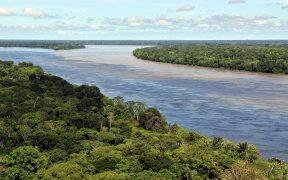 Pic de Neil Palmer (CIAT). Vista aérea da Floresta Amazônica, perto de Manaus, a capital do estado brasileiro do Amazonas.