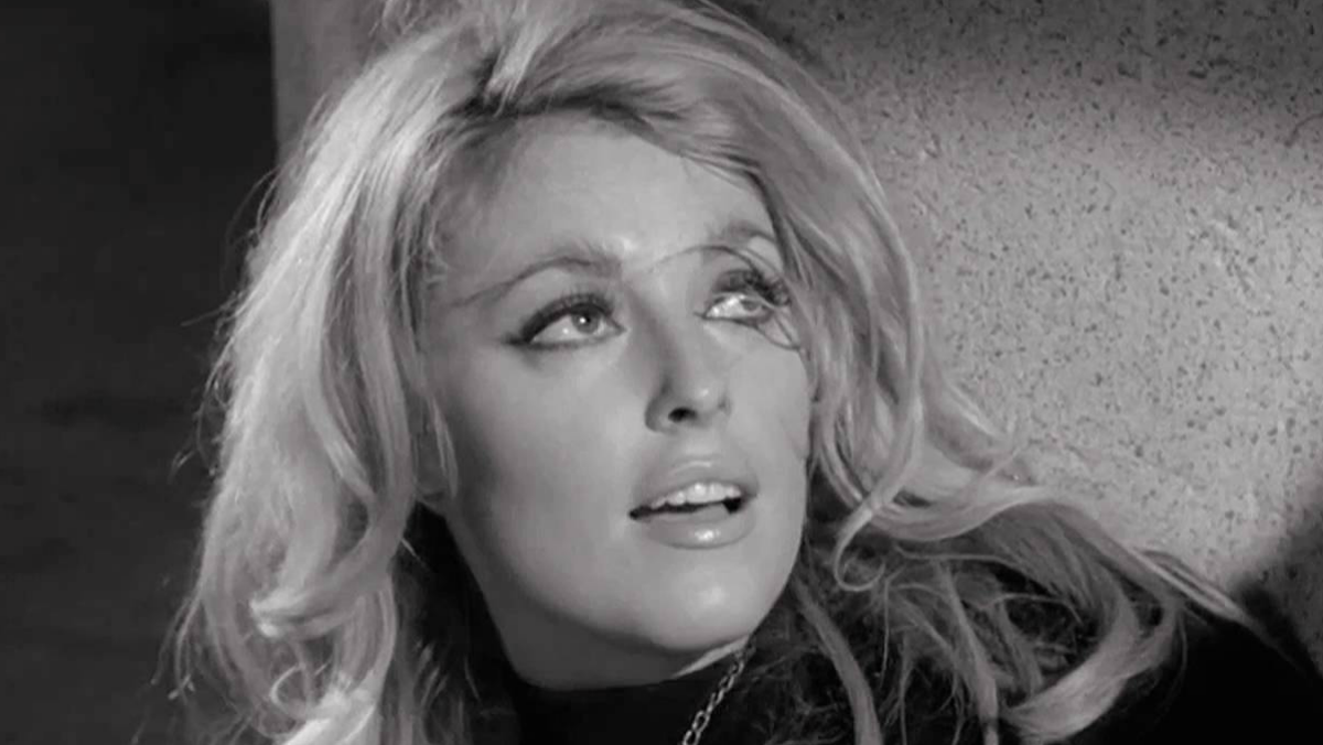 Remembering Sharon Tate – Citizen Truth