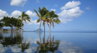 Corporations on Mauritius pay a much lower rate even when doing business in higher tax countries like Uganda. (Photo: Pixabay)