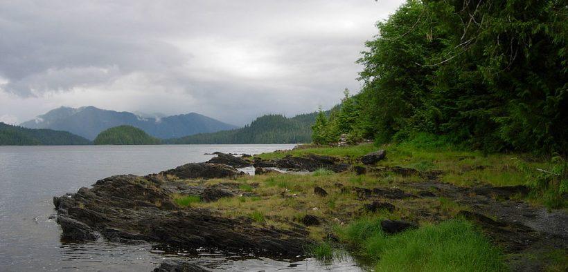 Тонгасский национальный лес возле Кетчикан, Аляска. Дата: 21 Июль 2007 (Фото: Марк Бреннан)