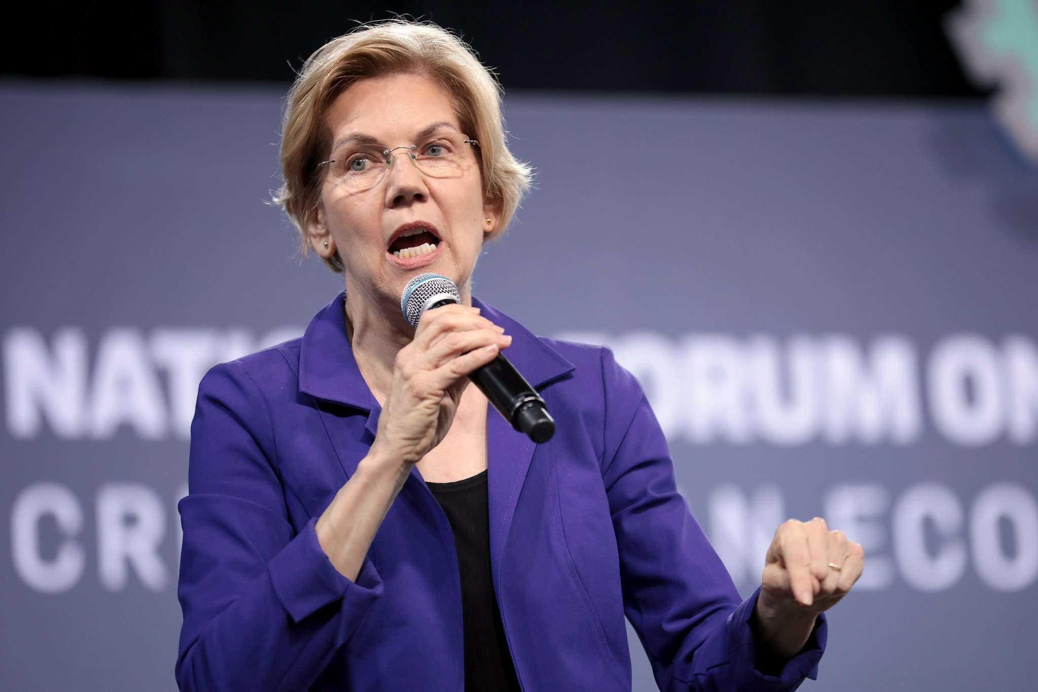 Elizabeth Warren Guns for Private Equity with Some Dangerous Proposals