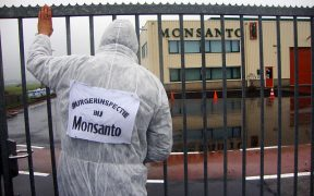 """Inspection publique"" des installations de Monsanto à Enkhuizen, aux Pays-Bas Date: 2 novembre 2010, 13: 25 (Photo: Luther Blissett)"