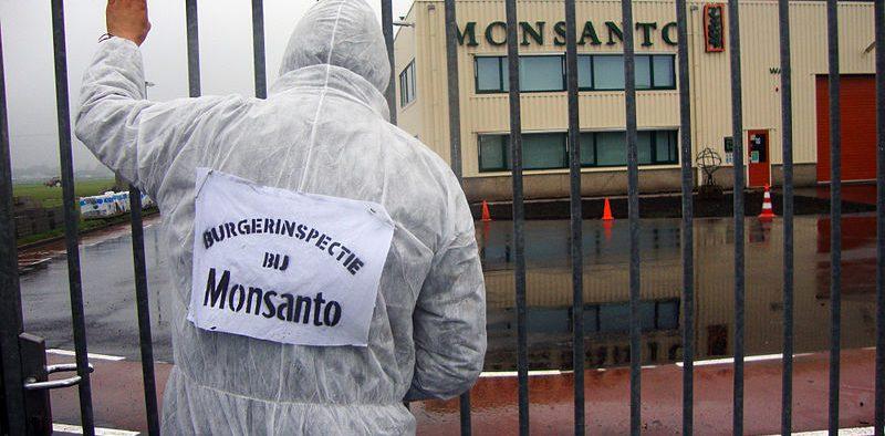 """""""Ispezione pubblica"""" dell'impianto di Monsanto a Enkhuizen, Paesi Bassi Data: 2 Novembre 2010, 13: 25 (Foto: Luther Blissett)"""