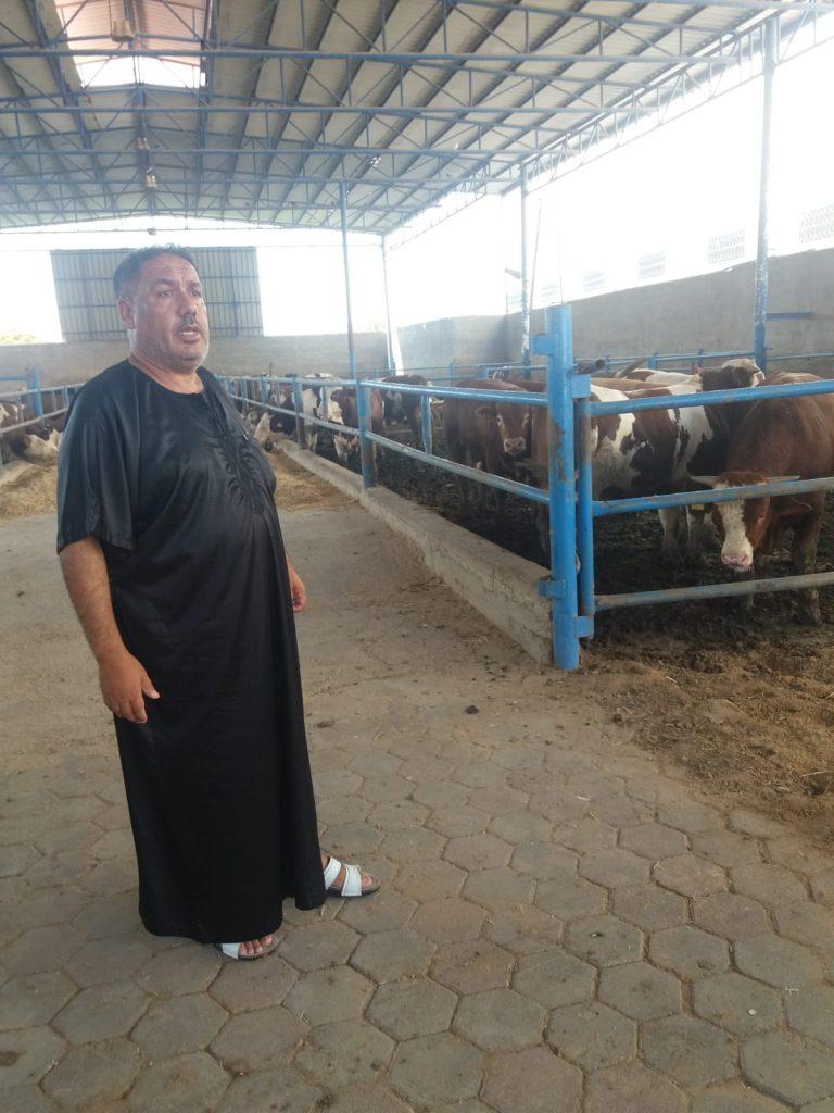 Raed Affana, proprietário da maior fazenda de gado no centro de Gaza. (Foto Rami Almeghari)