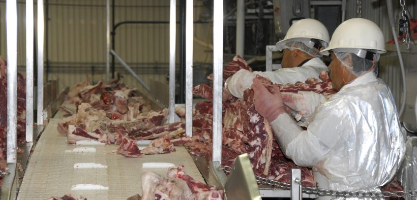 Workers at the Sam Kane beef slaughterhouse in Corpus Christi, Texas on June 10, 2008 dissect, sort and separate beef parts. U.S. Department of Agriculture (USDA) Food Safety and Inspection Service (FSIS) inspectors are on site to ensure the beef is processed in accordance with USDA FSIS regulations.