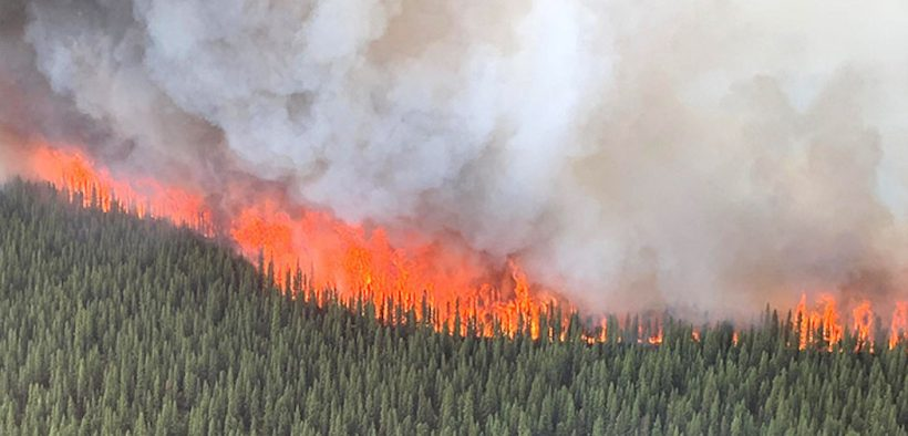 A crown fire (a forest fire that spreads from treetop to treetop) that is part of the Swan Lake wildfire rages through a stand of black spruce in a boreal forest in Alaska on June 19, 2019. In Alaska and Greenland, record or near-record high temperatures have contributed to the upsurge in wildfires.
