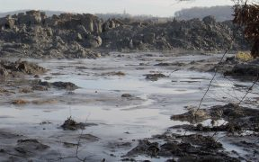 View of the Tennesse Valley Authority's Kingston Fossil Plant toxic coal ash spill in December 2008, appx. 1 mile from the retention pond. The pile of ash in the photo is 20-25 feet high, and stretches for two miles or so along this inlet (the inlet empties into the Emory River).