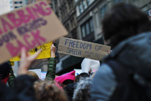 """""""Freedom of Speech Includes The Press"""" - Women's March in New York, January 21, 2017."""