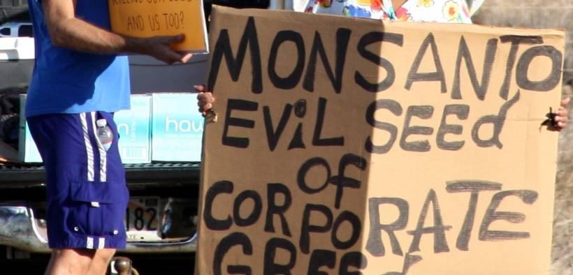 Members of Occupy Wall Street Maui protesting at Monsanto in Kihei. Date: January 28, 2012. (Photo: Viriditas)