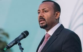 PM Abiy Ahmed at an inauguration event in Addis Ababa, November 2018.