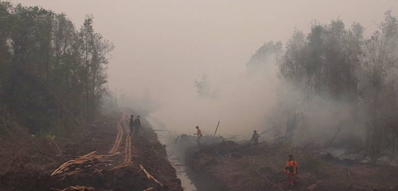 In many areas, drainage canals have lowered the water table enough to make peat swamp forests susceptible to fires. In the absence of human activity, Indonesia's climate is wet enough that wildfires would not occur. Here, workers respond to fire near a drainage canal as smoke obscures trees in the background.