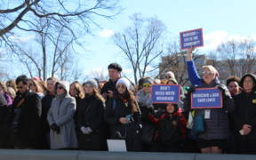 A crowd gathered on the Capitol grounds to voice their opposition to the American Health Care Act in March 2017. (Photo: Congresswoman Marcy Kaptur)