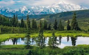 Wonderful Nature Beauty