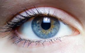 Iris   left eye of a girl e1596674496845