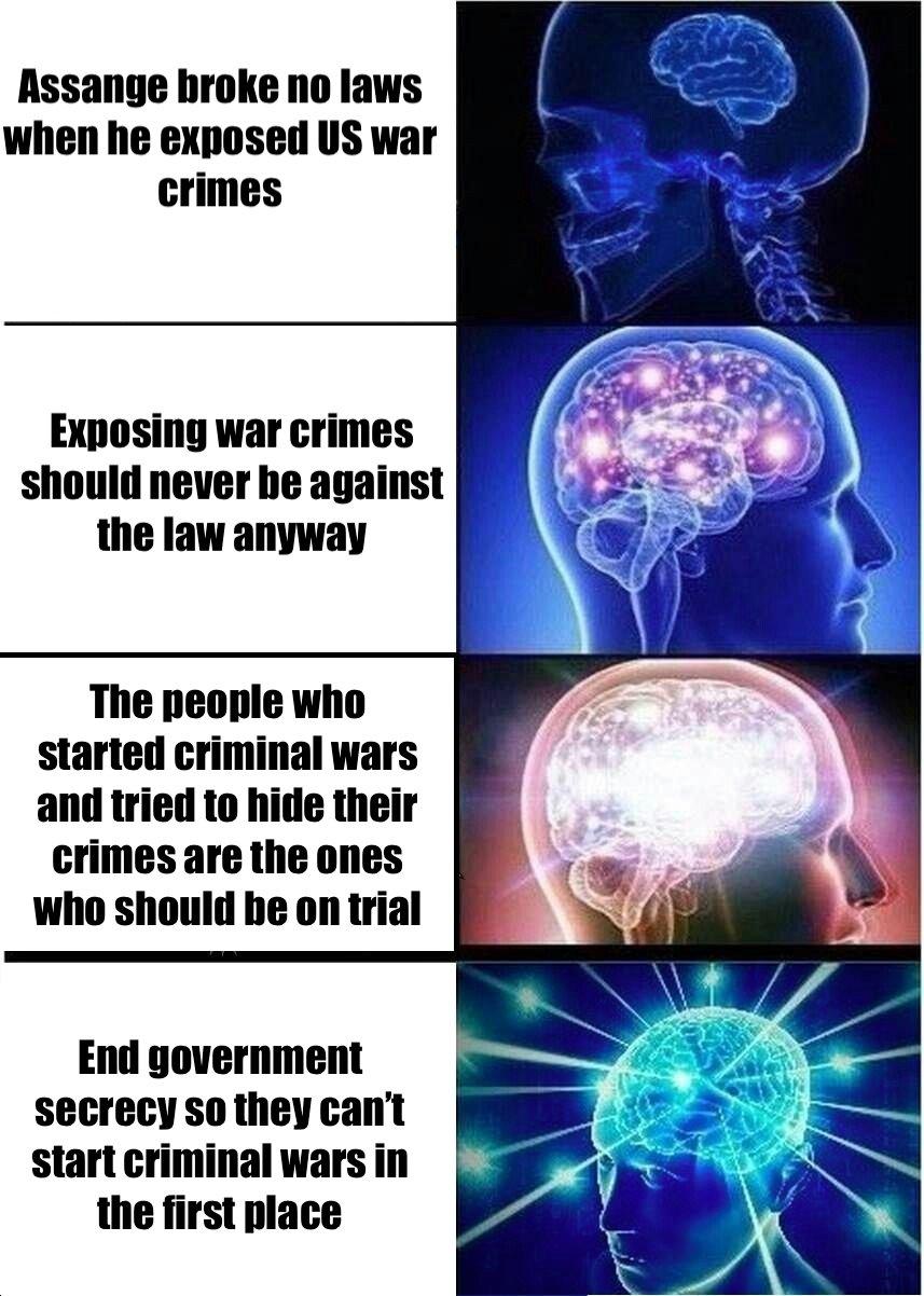 assange brain