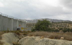 West Bank Wall 2